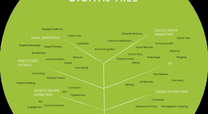 2web: Strategia de brand, coroborată cu zona de IT ajută un IMM să crească şi cu 50%